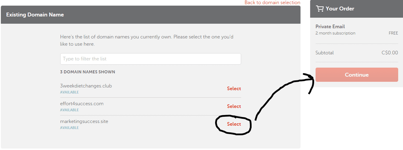 select-your-domain-name-and-click-continue